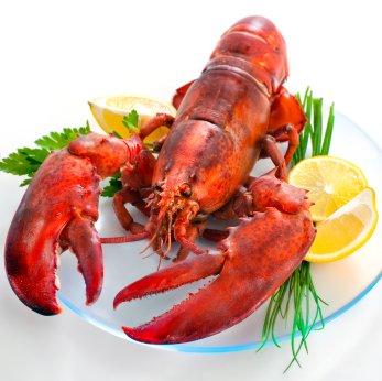 Long Beach Lobster Festival 2013