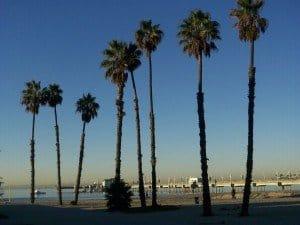 Long Beach Ocean View Homes - Southern California
