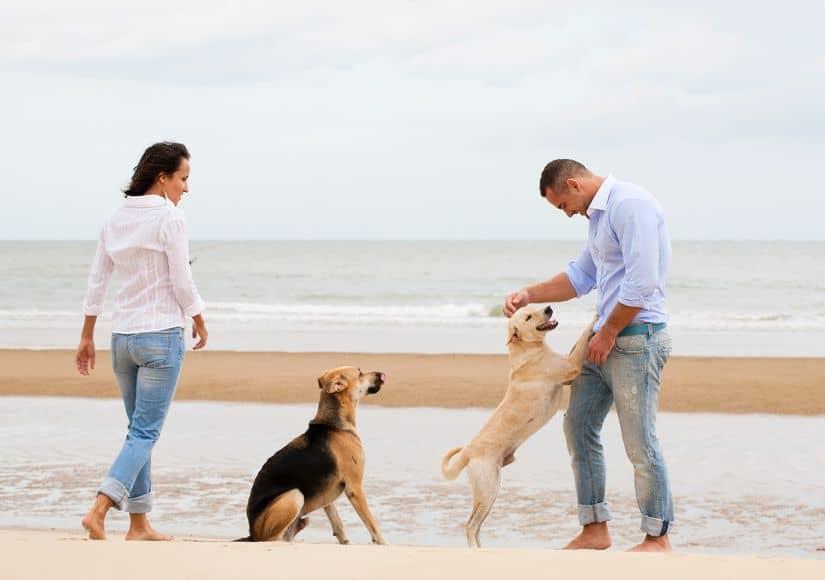 Seacliff Club Condos - Couples Having fun at the beach near this community