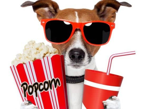 Popcorn for Long Beach Real Estate Trends October 2019