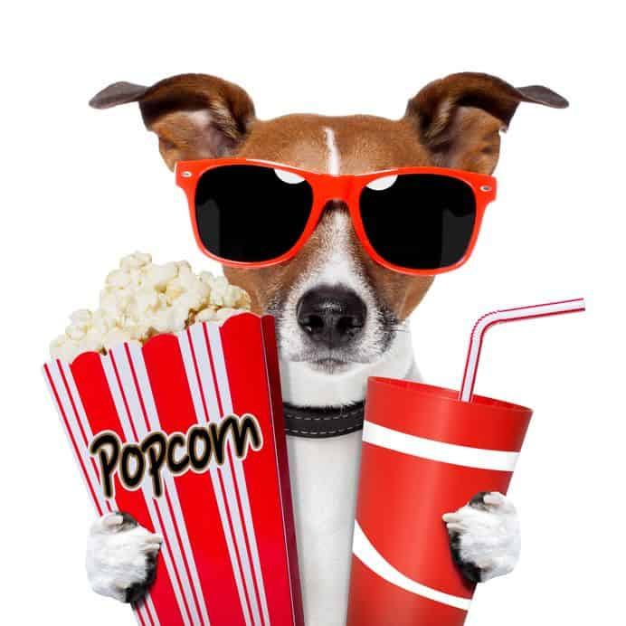 Popcorn for Rancho Palos Verdes Market Trends February 2019