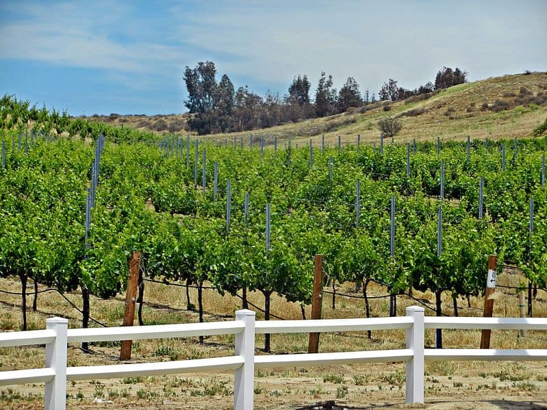 Temecula Wine Country Area