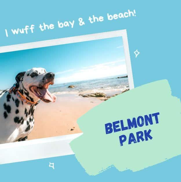 Belmont Park Homes Long Beach