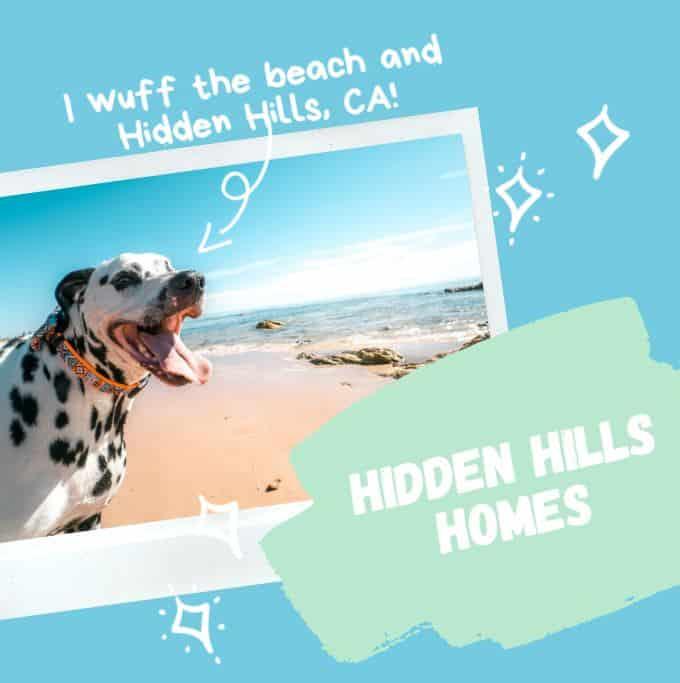 Hidden Hills Homes