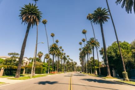 Beverly Hills Streets of Luxury Homes